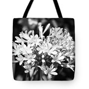 Flowering Blue African Lily Of The Nile Tote Bag
