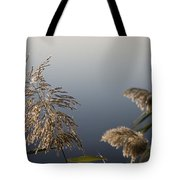 Flowering Cane Plant Tote Bag