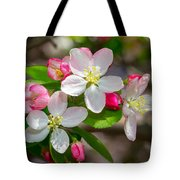 Flowering Cherry Tree Blossoms Tote Bag