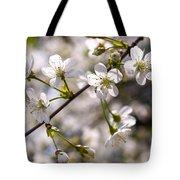 Flowering Cherry Tree Branch 4 Tote Bag