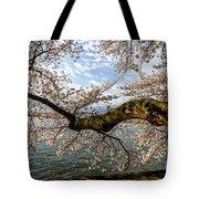 Flowering Cherry Tree Tote Bag