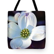 Flowering Dogwood Tote Bag