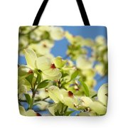 Flowering Dogwood Tree Art Print White Dogwood Flowers Blue Sky Art Tote Bag