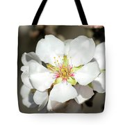 Flowering Fruit Tree Tote Bag