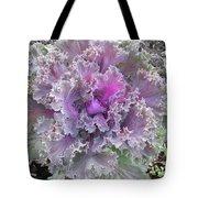 Flowering Kale Tote Bag