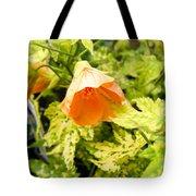 Flowering Maple Tote Bag