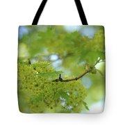 Flowering Maple Tree Tote Bag