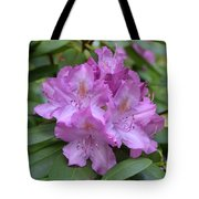Flowering Pink Rhododendron Blossoms On A Bush Tote Bag