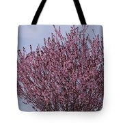 Flowering Plum In Bloom Tote Bag