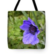 Flowering Purple Anemone Flower Blossom In A Garden Tote Bag