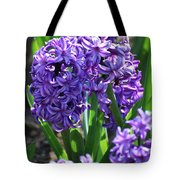 Flowering Purple Hyacinthus Flower Bulb Blooming Tote Bag