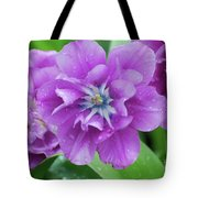 Flowering Purple Tulips With Raindrops From A Spring Rain Tote Bag