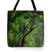 Flowering Trees Near The Path Tote Bag