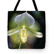 Flowers 61 Tote Bag