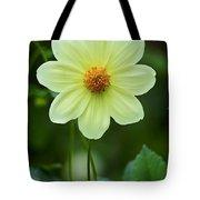 Flowers 72 Tote Bag
