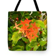 Flowers And Foliage Tote Bag