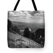 Flowers At Table Rock Overlook In Black And White Two Tote Bag