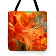 Flowers Azalea Garden Orange Azalea Flowers 1 Giclee Prints Baslee Troutman Tote Bag