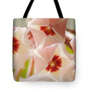 Flowers-hoya 1 Tote Bag
