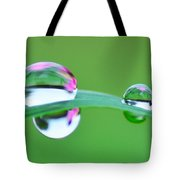 Flowers In The Raindrops Tote Bag