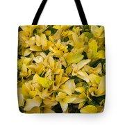 Flowers Of Domitilla Tote Bag