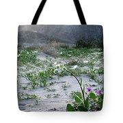 Flowers Of Ocotilla Tote Bag