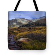 Flowing From Bierstadt Tote Bag by Barbara Schultheis