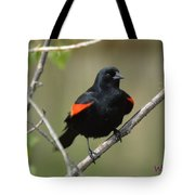 Fluffed Red-winged Blackbird Tote Bag