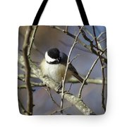 Fluffy Chickadee Tote Bag