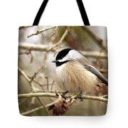 Fluffy Chickadee Tote Bag