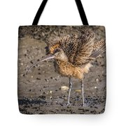 Fluffy Long-billed Curlew Tote Bag