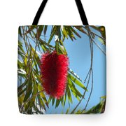 Fluffy Reds At The Library Tote Bag