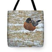 Fluffy Robin In Snow Tote Bag