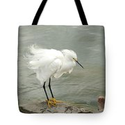 Fluffy Snowy Egret Tote Bag