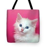 Fluffy White Kitten On Pink Tote Bag