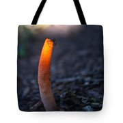Fly And Stinkhorn Tote Bag