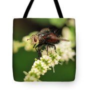 Fly Beauty Tote Bag