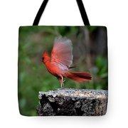 Fly Birds 318 Tote Bag