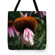 Fly Eyes Tote Bag