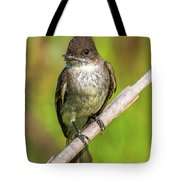 Fly In The Mouth Tote Bag