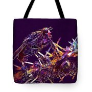 Fly Insect Nature Macro Close  Tote Bag