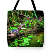 Fly Into My Mouth Please Tote Bag