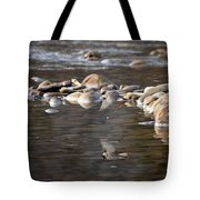 Flycatcher Hunting On The Buffalo River Tote Bag