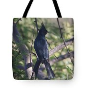 Silky Flycatcher Tote Bag