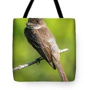 Flycatcher Tote Bag