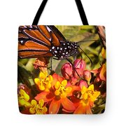 Flying Beauty Tote Bag