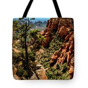 Flying Buttress 04-091 Tote Bag
