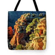 Flying Buttress 06-045 Tote Bag