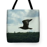 Flying Ephraim Wi Tote Bag
