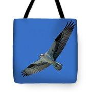 Flying Osprey Tote Bag